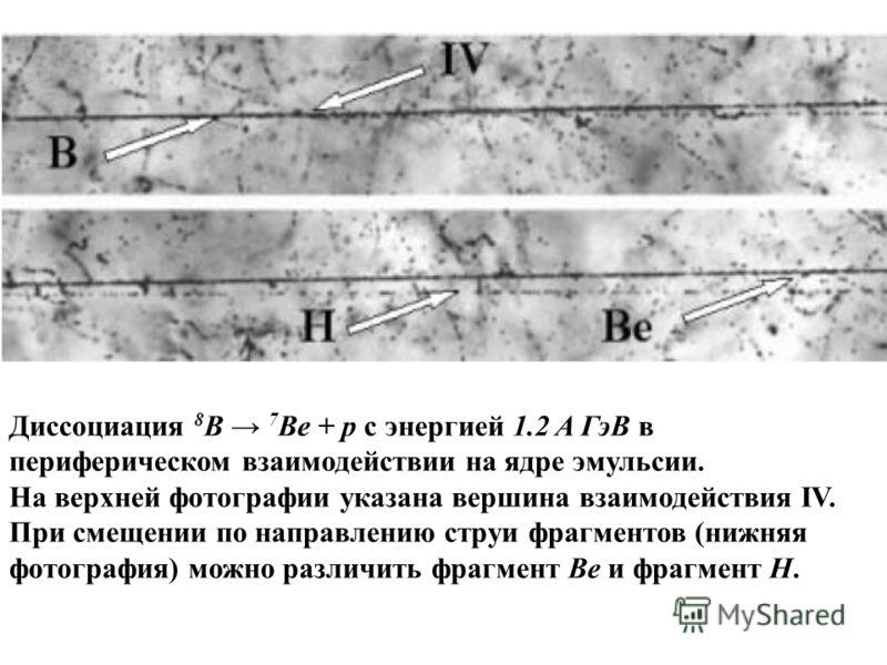 Диссоциация 8 В 7 Ве + p c энергией 1.2 A ГэВ в периферическом взаимодействии на ядре эмульсии. На верхней фотографии указана вершина взаимодействия IV. При смещении по направлению струи фрагментов (нижняя фотография) можно различить фрагмент Be и фр