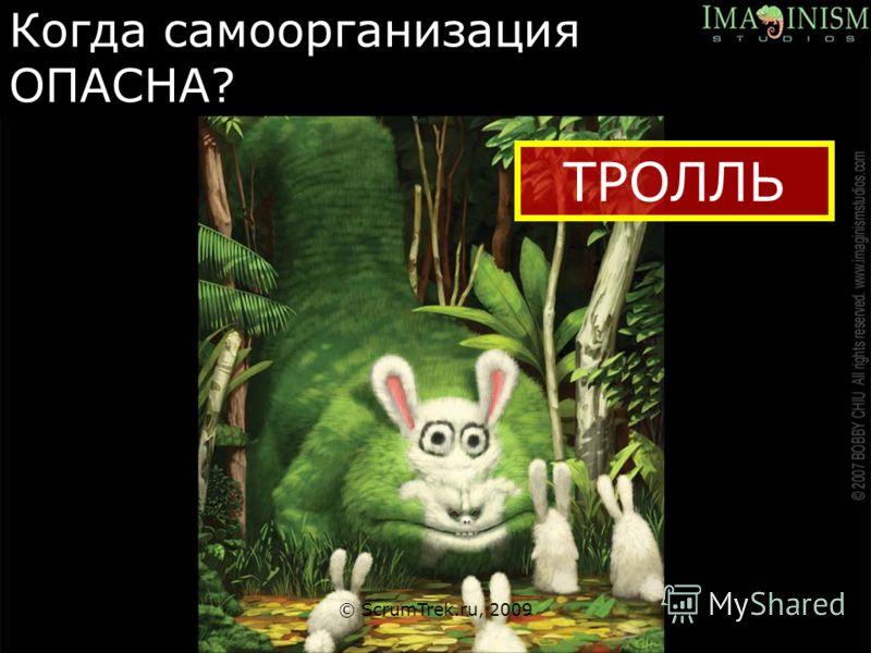 Когда самоорганизация ОПАСНА? © ScrumTrek.ru, 2009 ТРОЛЛЬ
