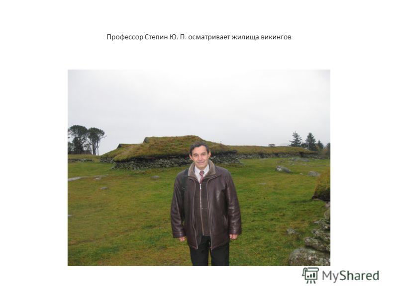 Профессор Степин Ю. П. осматривает жилища викингов