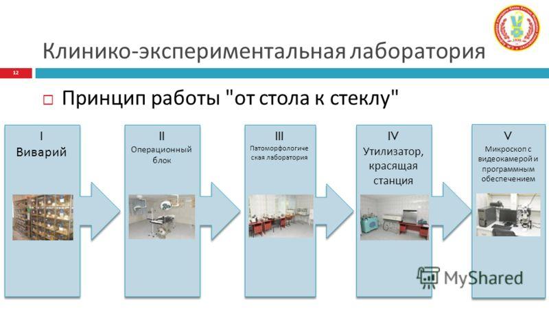 Клинико-экспериментальная лаборатория Принцип работы
