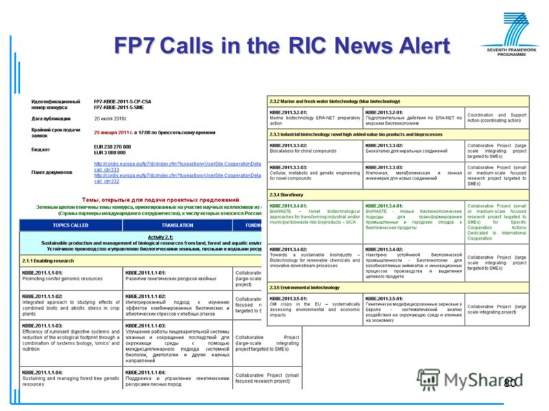 © РИЦ ВГУ80 FP7 Calls in the RIC News Alert