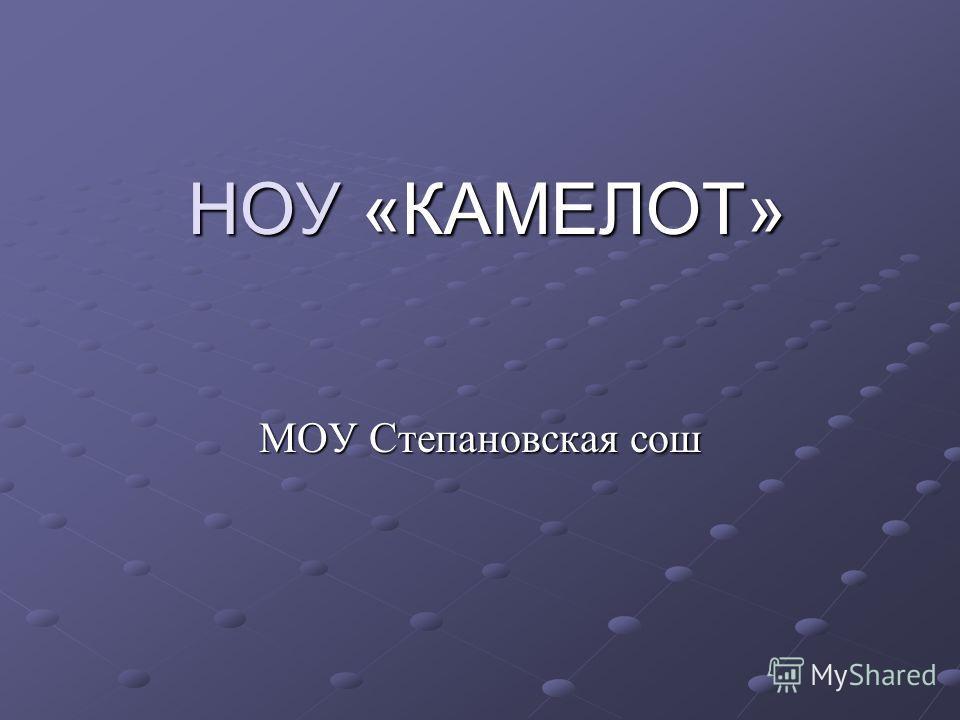 НОУ «КАМЕЛОТ» МОУ Степановская сош