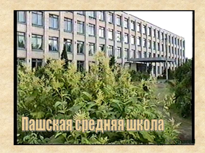Пашская средняя школа Учебно-опытный участок