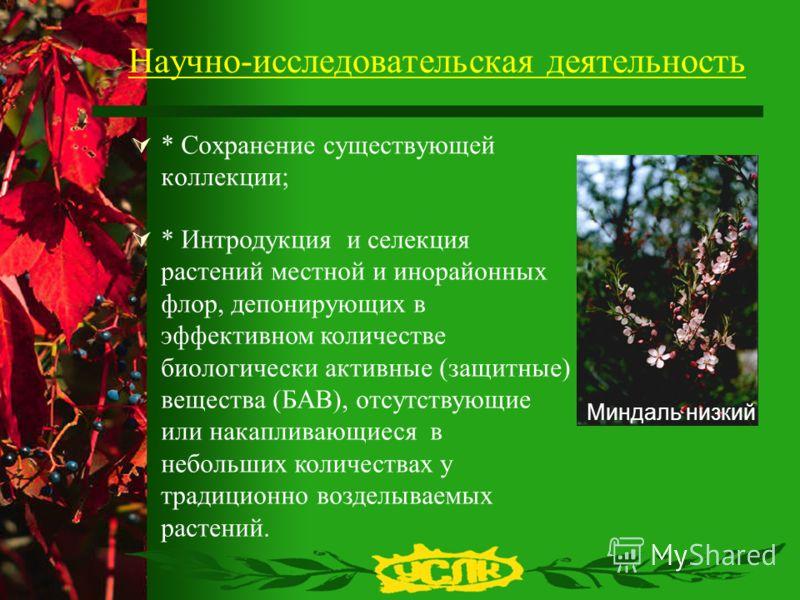 Научно-исследовательская деятельность * Сохранение существующей коллекции; Миндаль низкий * Интродукция и селекция растений местной и инорайонных флор, депонирующих в эффективном количестве биологически активные (защитные) вещества (БАВ), отсутствующ
