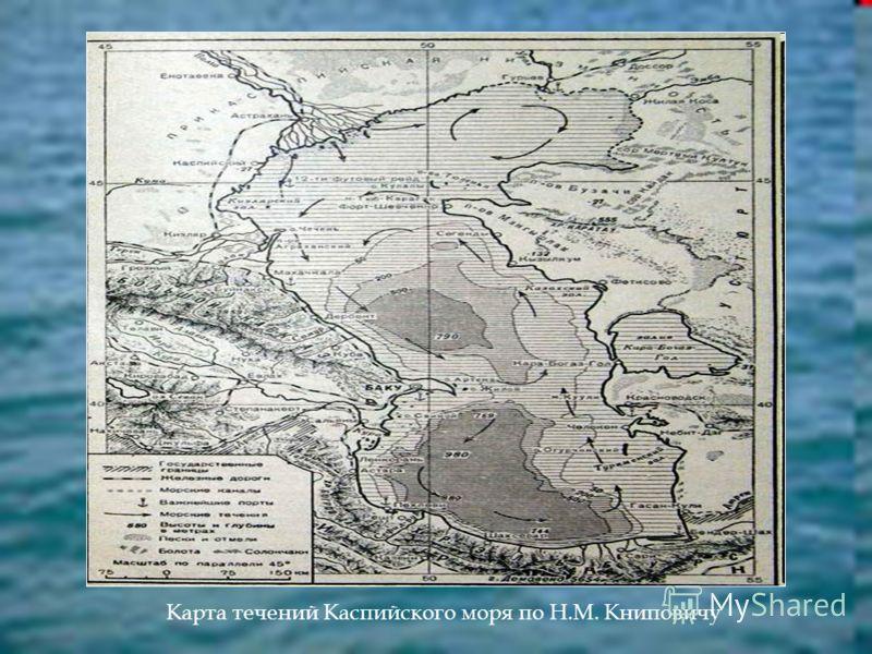 Карта течений Каспийского моря по Н.М. Книповичу