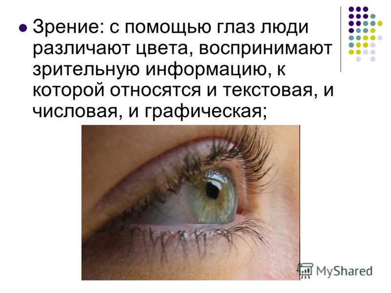 Зрение: с помощью глаз люди различают цвета, воспринимают зрительную информацию, к которой относятся и текстовая, и числовая, и графическая;