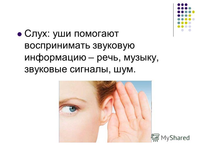 Слух: уши помогают воспринимать звуковую информацию – речь, музыку, звуковые сигналы, шум.