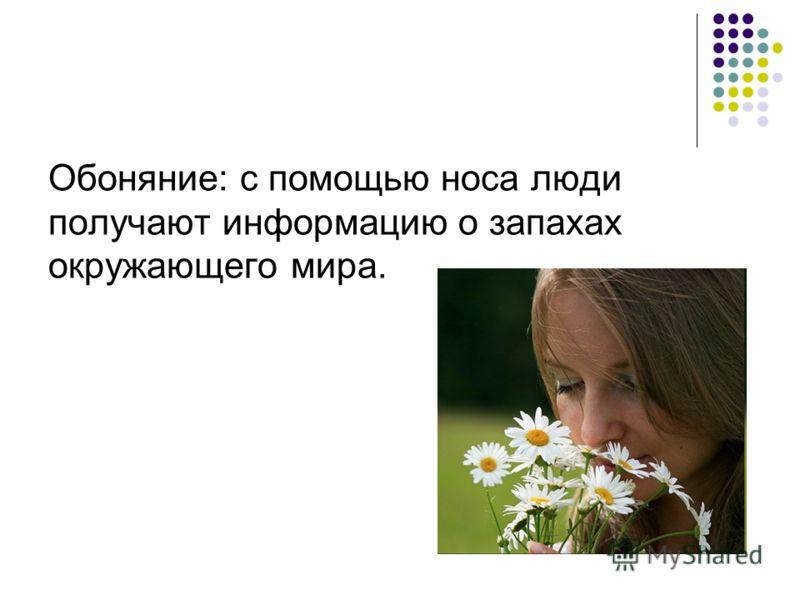 Обоняние: с помощью носа люди получают информацию о запахах окружающего мира.