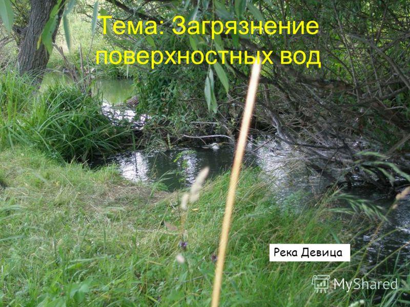 Тема: Загрязнение поверхностных вод Река Девица