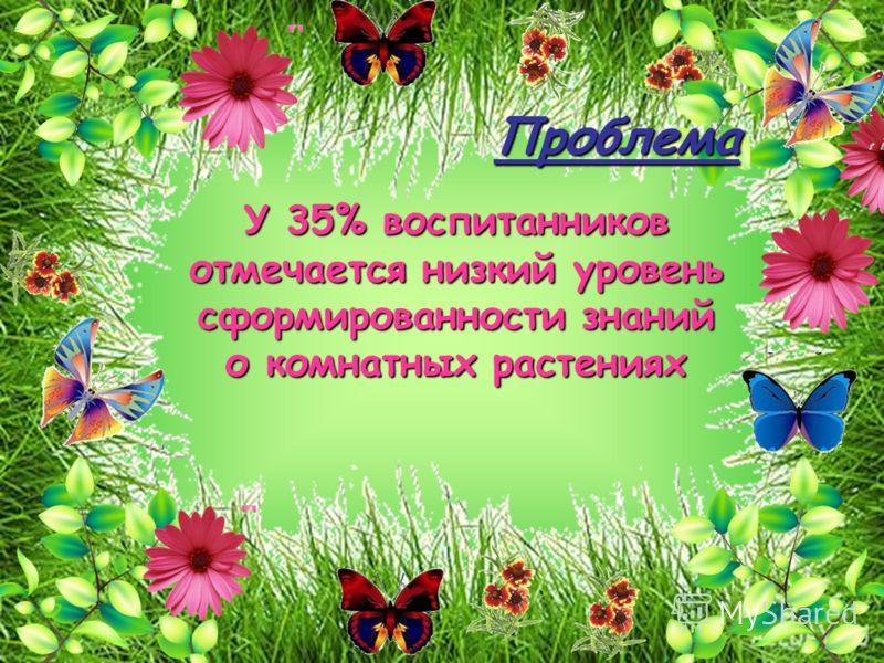 Проблема У 35% воспитанников отмечается низкий уровень сформированности знаний о комнатных растениях