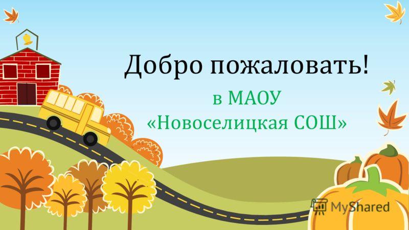 Добро пожаловать! в МАОУ «Новоселицкая СОШ»