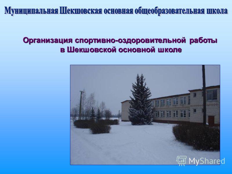 Организация спортивно-оздоровительной работы в Шекшовской основной школе в Шекшовской основной школе