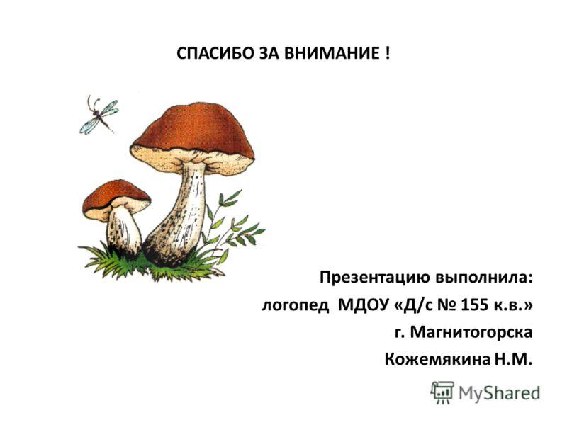 СПАСИБО ЗА ВНИМАНИЕ ! Презентацию выполнила: логопед МДОУ «Д/с 155 к.в.» г. Магнитогорска Кожемякина Н.М.