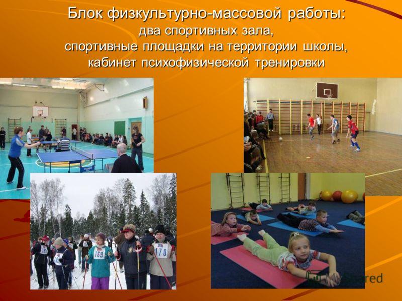 Блок физкультурно-массовой работы: два спортивных зала, спортивные площадки на территории школы, кабинет психофизической тренировки