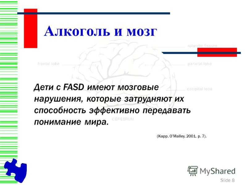 Slide 8 Алкоголь и мозг Дети с FASD имеют мозговые нарушения, которые затрудняют их способность эффективно передавать понимание мира. (Kapp, OMalley, 2001, p. 7).