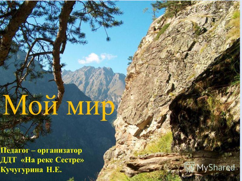 Мой мир Педагог – организатор ДДТ «На реке Сестре» Кучугурина Н.Е.