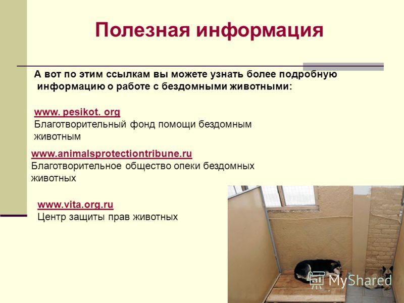 А вот по этим ссылкам вы можете узнать более подробную информацию о работе с бездомными животными: Полезная информация www. pesikot. org Благотворительный фонд помощи бездомным животным www.animalsprotectiontribune.ru Благотворительное общество опеки