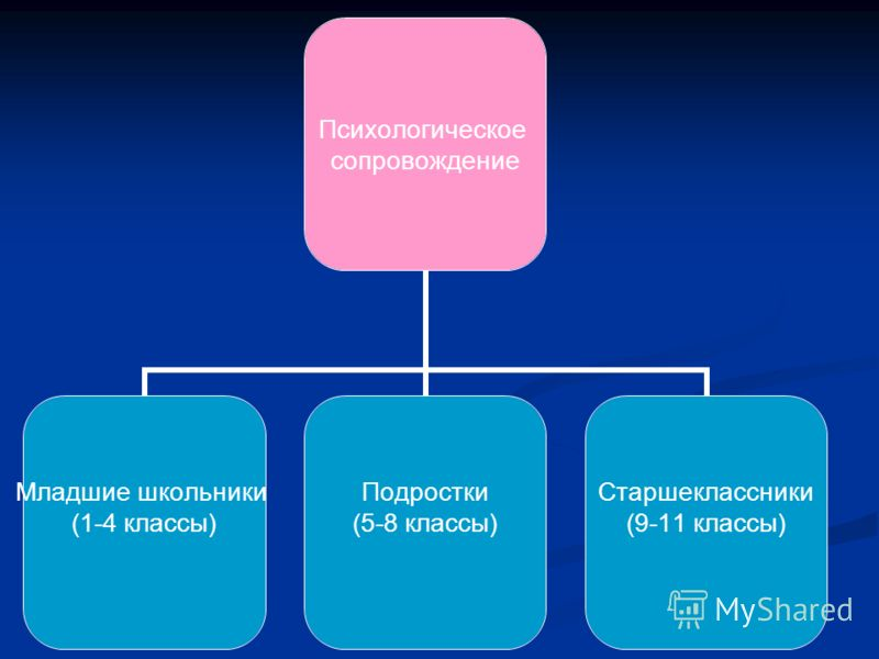 Психологическое сопровождение Младшие школьники (1-4 классы) Подростки (5-8 классы) Старшеклассники (9-11 классы)