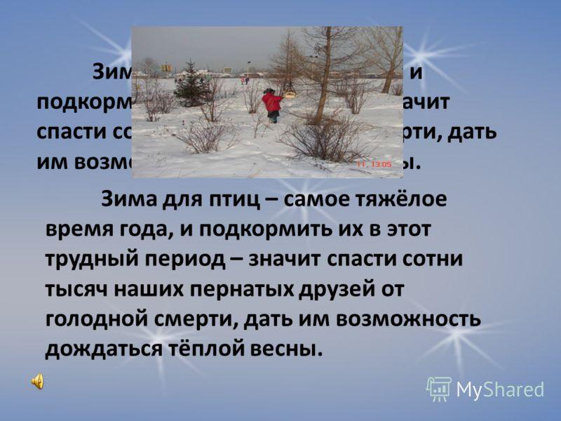 Дятел Ворон ЗябликСова Спящая Чёрный Пёстрый Красноголовый