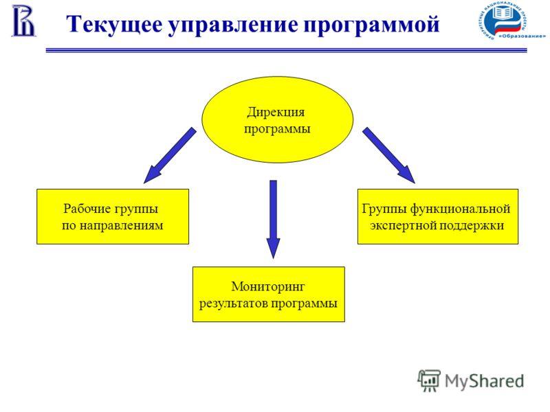 Текущее управление программой Рабочие группы по направлениям Мониторинг результатов программы Группы функциональной экспертной поддержки Дирекция программы