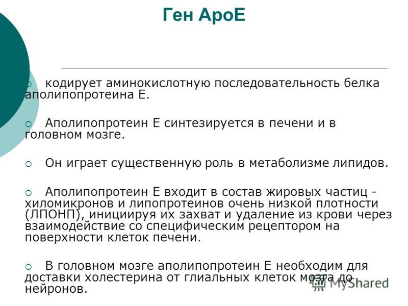 Ген ApoE кодирует аминокислотную последовательность белка aполипопротеина Е. Aполипопротеин Е синтезируется в печени и в головном мозге. Он играет существенную роль в метаболизме липидов. Aполипопротеин Е входит в состав жировых частиц - хиломикронов