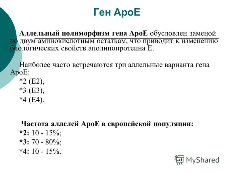 Ген ApoE Аллельный полиморфизм гена ApoE обусловлен заменой по двум аминокислотным остаткам, что приводит к изменению биологических свойств aполипопротеина Е. Наиболее часто встречаются три аллельные варианта гена ApoE: *2 (E2), *3 (E3), *4 (E4). Час