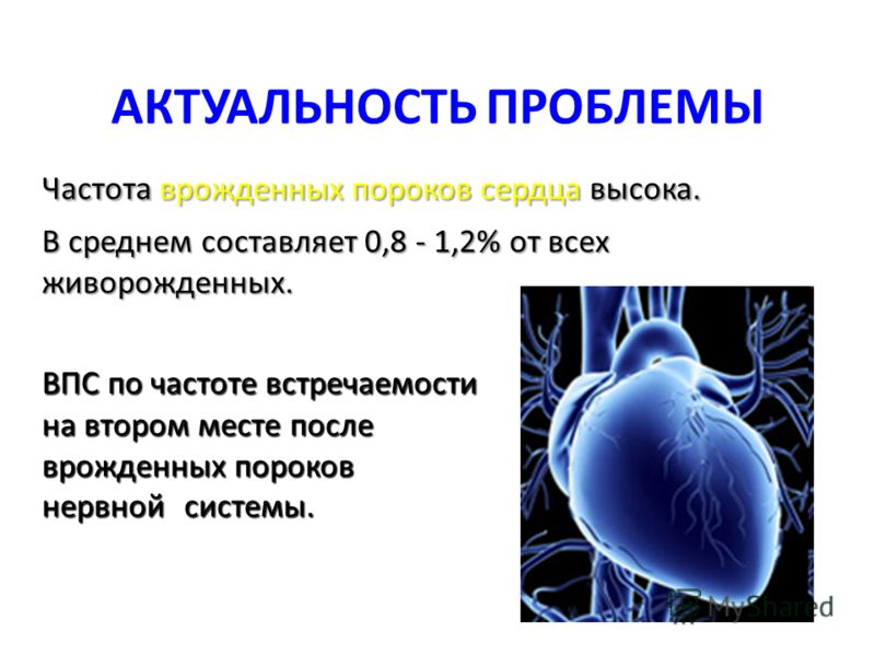 АКТУАЛЬНОСТЬ ПРОБЛЕМЫ Частота врожденных пороков сердца высока. В среднем составляет 0,8 - 1,2% от всех живорожденных. ВПС по частоте встречаемости на втором месте после врожденных пороков нервной системы.