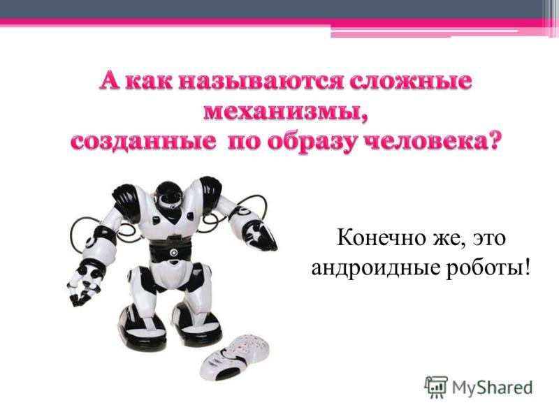Конечно же, это андроидные роботы!