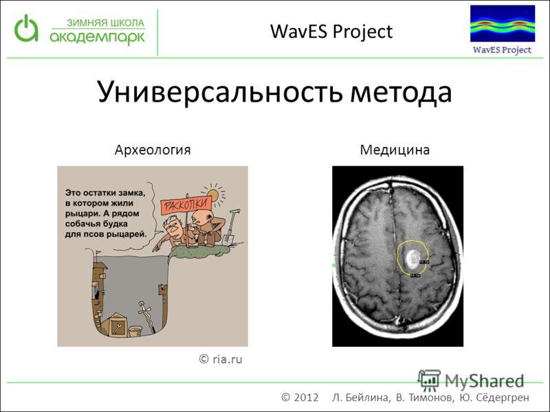 Универсальность метода © 2012 Л. Бейлина, В. Тимонов, Ю. Сёдергрен WavES Project © ria.ru АрхеологияМедицина