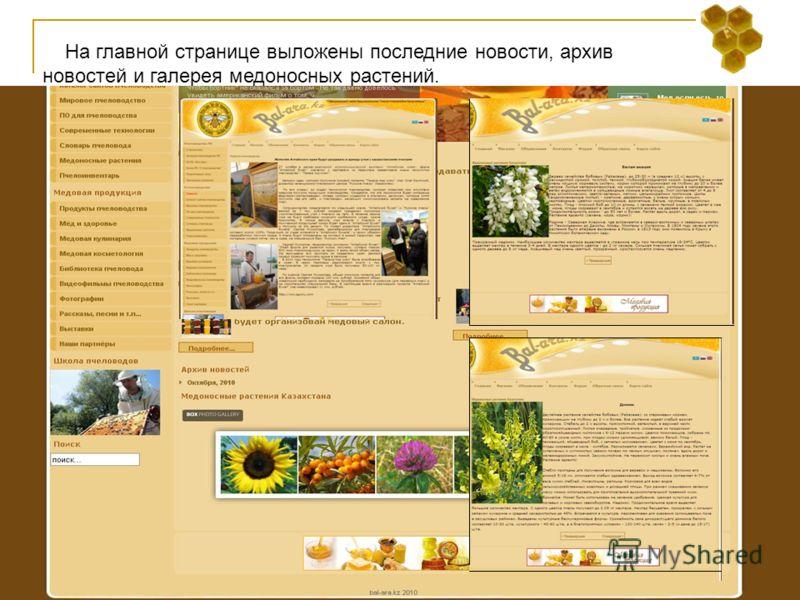 На главной странице выложены последние новости, архив новостей и галерея медоносных растений.