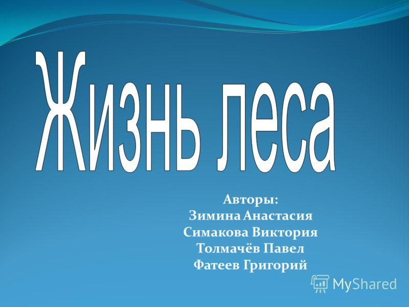 Авторы: Зимина Анастасия Симакова Виктория Толмачёв Павел Фатеев Григорий