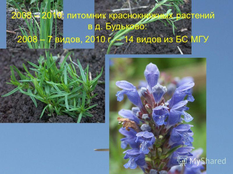 2008 – 2010: питомник краснокнижных растений в д. Будьково: 2008 – 7 видов, 2010 г. – 14 видов из БС МГУ