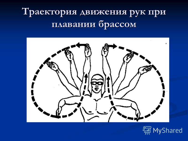 Траектория движения рук при плавании брассом