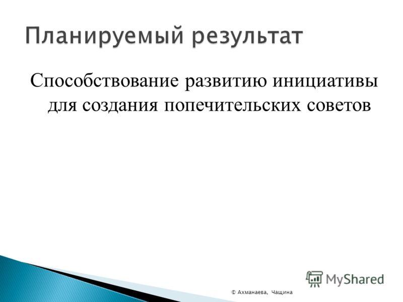 Способствование развитию инициативы для создания попечительских советов © Ахманаева, Чащина