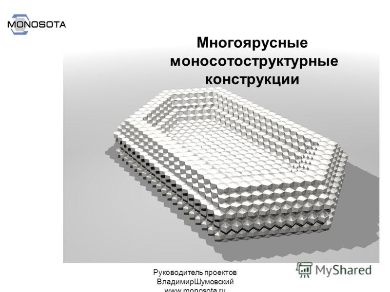 Руководитель проектов ВладимирШумовский www.monosota.ru Многоярусные моносотоструктурные конструкции
