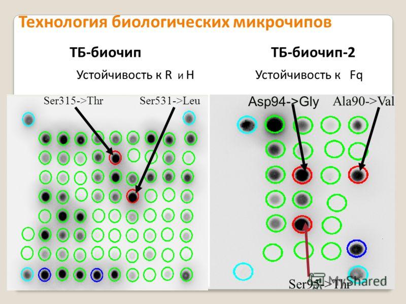 Ala90->Val Asp94->Gly Ser315->ThrSer531->Leu Устойчивость к R и H Устойчивость к Fq Ser95->Thr Технология биологических микрочипов ТБ-биочипТБ-биочип-2 26