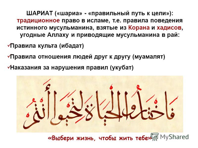 ШАРИАТ («шариа» - «правильный путь к цели»): традиционное право в исламе, т.е. правила поведения истинного мусульманина, взятые из Корана и хадисов, угодные Аллаху и приводящие мусульманина в рай: Правила культа (ибадат) Правила отношения людей друг