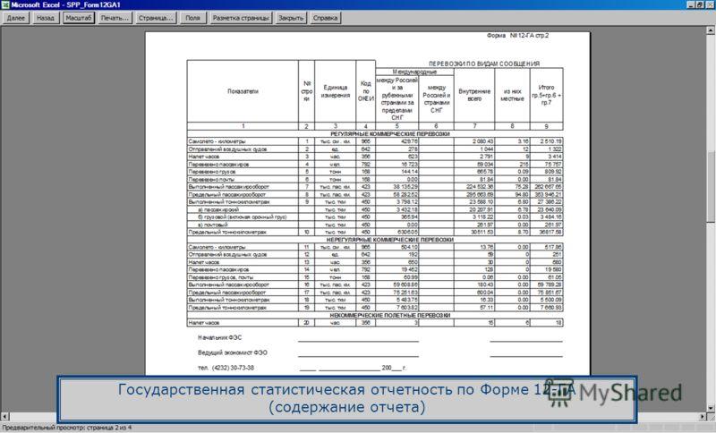 Государственная статистическая отчетность по Форме 12-ГА (содержание отчета)