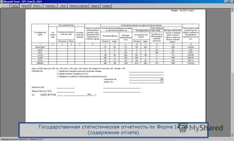 Государственная статистическая отчетность по Форме 14-ГА (содержание отчета)