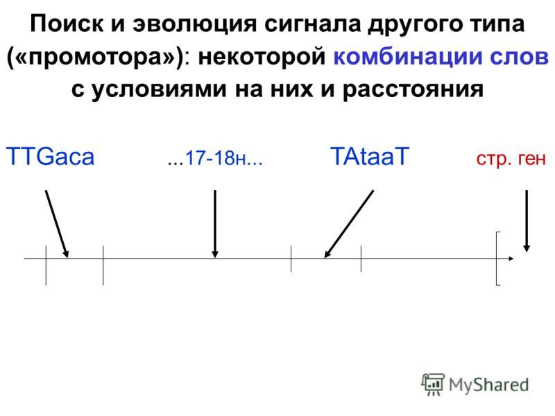 Поиск и эволюция сигнала другого типа («промотора»): некоторой комбинации слов с условиями на них и расстояния TTGaca...17-18н... TAtaaT стр. ген