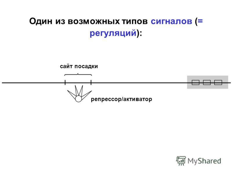 Один из возможных типов сигналов (= регуляций): сайт посадки репрессор/активатор