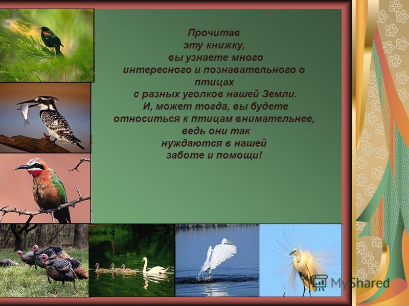 Прочитав эту книжку, вы узнаете много интересного и познавательного о птицах с разных уголков нашей Земли. И, может тогда, вы будете относиться к птицам внимательнее, ведь они так нуждаются в нашей заботе и помощи!