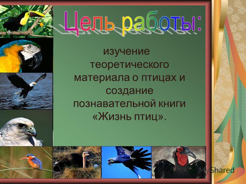 изучение теоретического материала о птицах и создание познавательной книги «Жизнь птиц».
