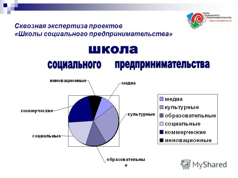Сквозная экспертиза проектов «Школы социального предпринимательства»