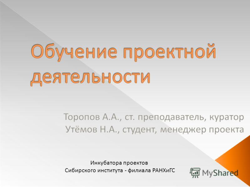 Инкубатора проектов Сибирского института - филиала РАНХиГС