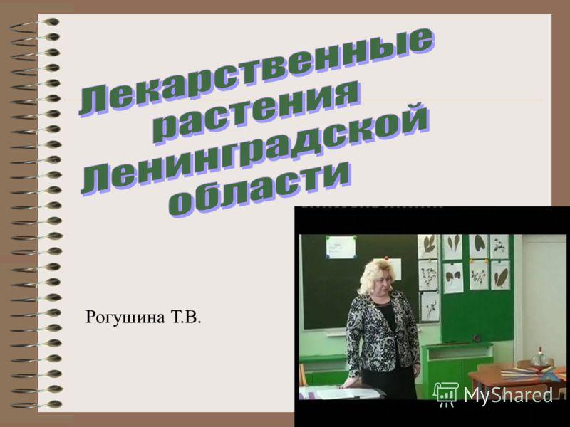 Рогушина Т.В.