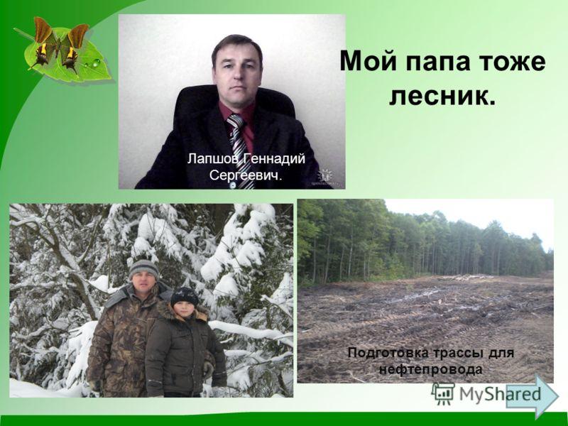 Мой папа тоже лесник. Лапшов Геннадий Сергеевич. Подготовка трассы для нефтепровода