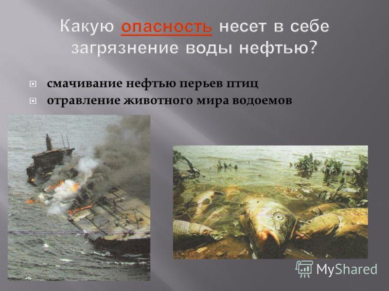 Какую опасность несет в себе загрязнение воды нефтью ? смачивание нефтью перьев птиц отравление животного мира водоемов