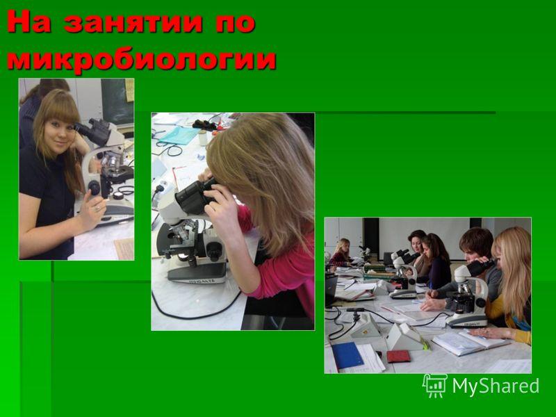 На занятии по микробиологии