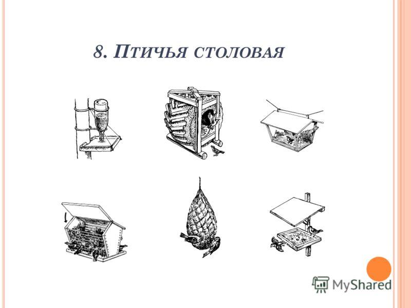 8. П ТИЧЬЯ СТОЛОВАЯ